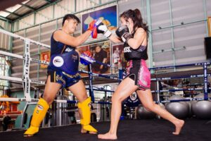 boxing muay thai punch shinguards